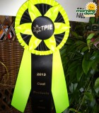 tpie cool products awards