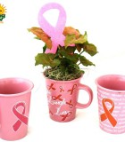 assorted mugs w pink plants