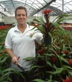 bromeliad guzmania decora
