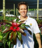 bromeliad neoregelia medium rare