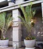 plantarium four seasons