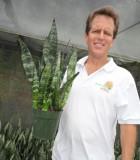 sansevieria black coral snake plant