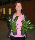 spathiphyllum allison Peace Lily