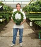 topiary ivy wreath