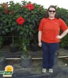 Hibiscus Braid Red