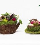 Dish Garden Teacup Teapot