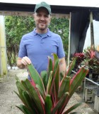 Cordyline Hilo Rainbow