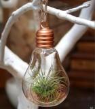 LiveTrends Copper Light of Life