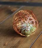 LiveTrends Mini GeoBall Copper