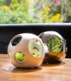 LiveTrends Open Air Ball