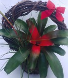 Christmas Bromeliad Wreath Planter