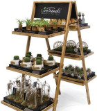 LiveTrends-Display Rack 10 in
