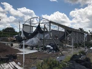 Nursery-Hurricane-Irma6