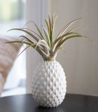 LiveTrends Ananas 4 in