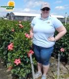 Flowering Hibiscus Column 10 in