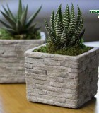 LiveTrends Stone Wall Mini 3 in