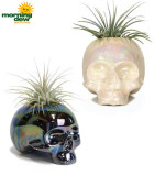 LiveTrends Shimmering Skull 3 in