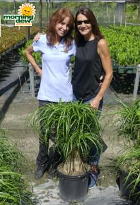 Suzanne & Terri