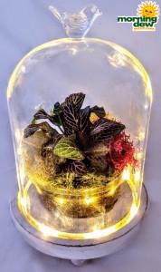 Terrarium LED Lights 8 in
