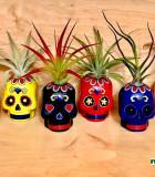 Halloween Sugar Skulls 3 in