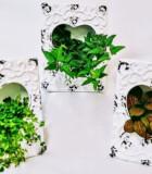 Dish Garden Ceramic Picture Frame
